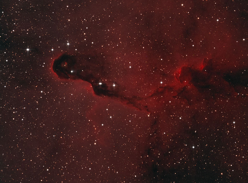 IC1396 Elephant's Trunk Nebula
